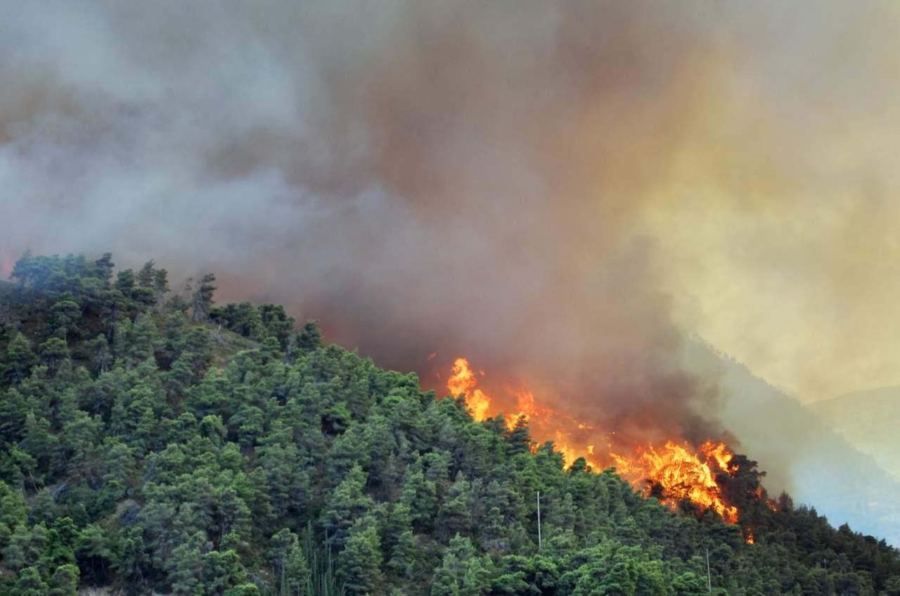 Avviso Termine Periodo Ad Alto Rischio Per Gli Incendi Boschivi